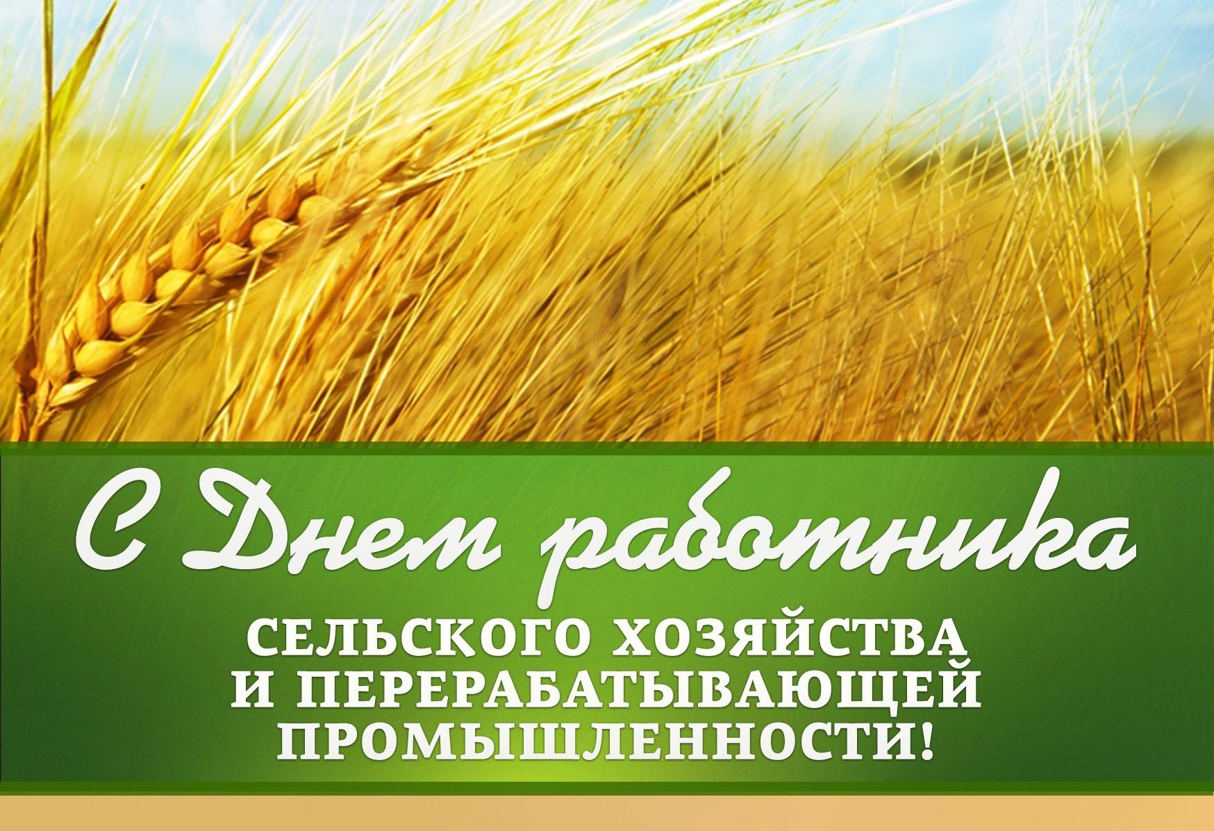 unecha-gazeta.ru
